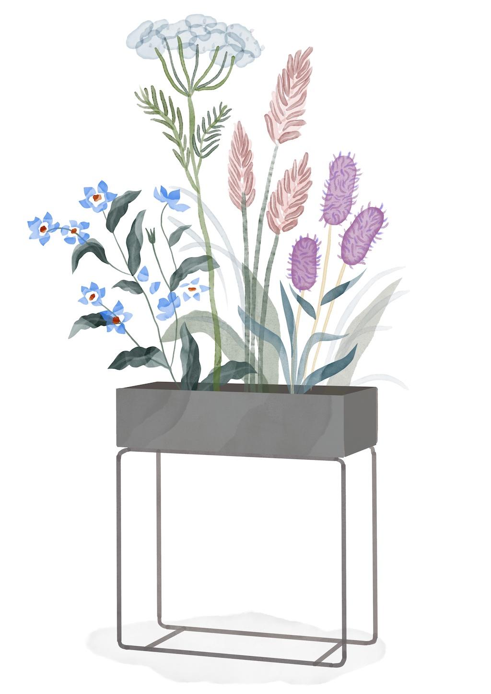 Illustration, Plant Box, ferm LIVING, Wildblumen