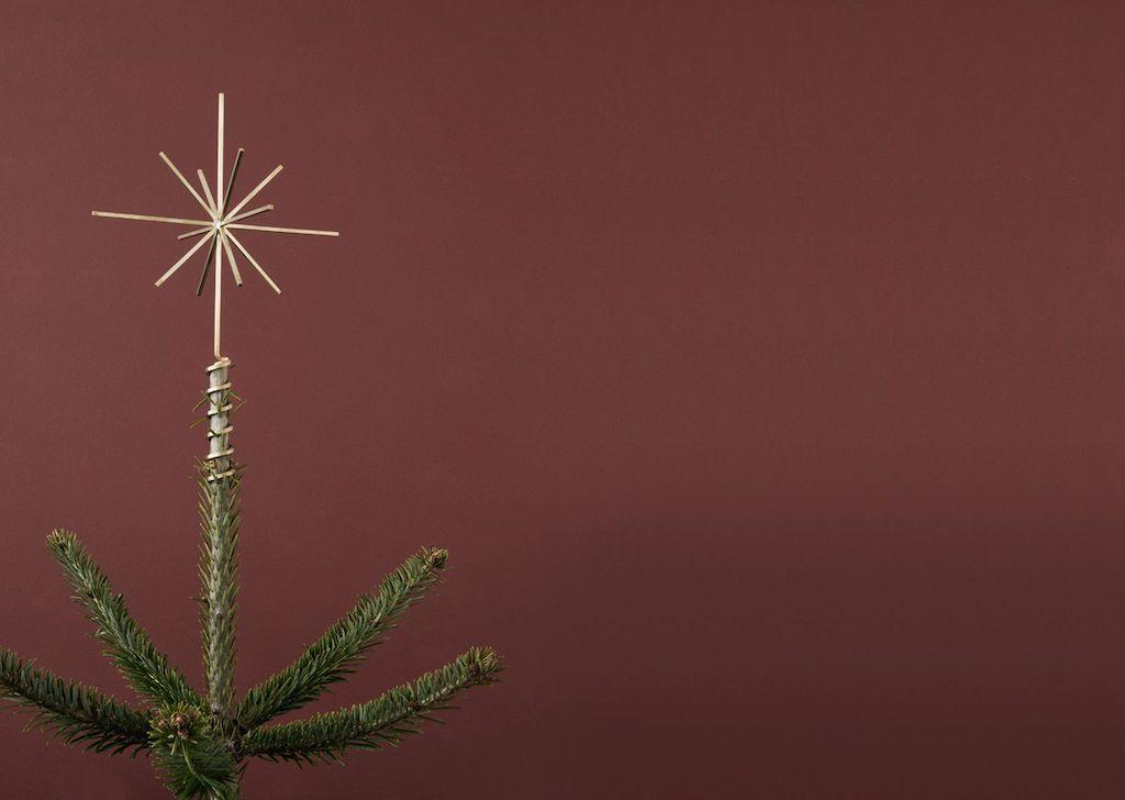 Sternförmige Baumspitze auf einer Tanne.