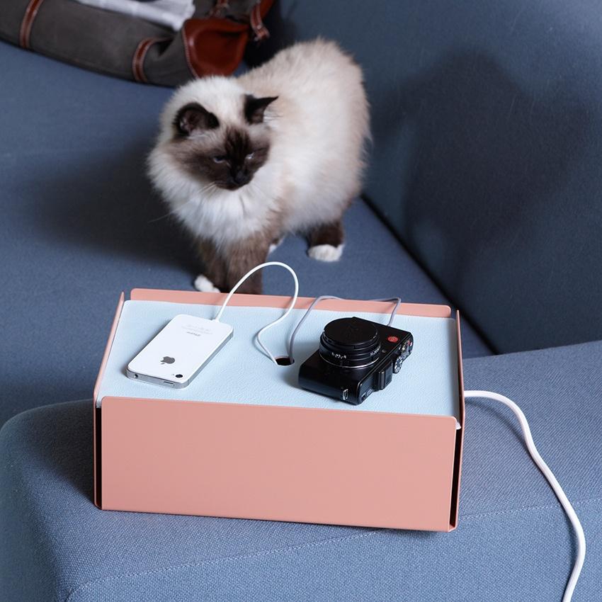 Katze und Charge Box auf Sofa